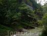 Гуамское ущелье, на протяжении всего пути сделаны специальные спуски, которые позволяли подойти ближе к воде.
