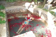 термальные источники Наньшань (ванна из роз)