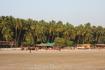 Палолем тоже утопает в пальмах !Пляж ШИКАРНЫЙ