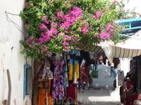 В Медине Хаммамета торговля сувенирами оттеснила от мечети мастерские, хозяева которых занимались традиционными для здешних мест ремеслами