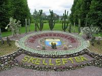 В парке в Шелефтео обнаружили клумбу из кактусов.