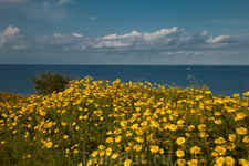 Кипр в апреле!