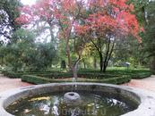 В саду почти не было посетителей и было замечательно прогуливаться в одиночестве по аллеям.