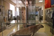 Музей истории строительства БАМа