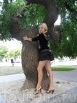 деревья у оперного тетра поражают не только формами..)но и сотнями лет..)
