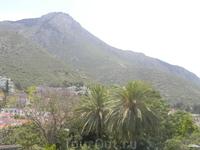 Вид из Аббатства Беллапаис