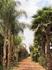 Отель больше похож на эко-ферму с уютными тропинками