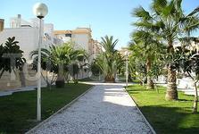 Villa (Guardamar Del Segurra)