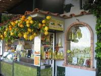 Там на каждом углу продают лимоны и лимончелу (традиционный итальянский ликер из лимонов) Супер вкусный!
