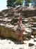 В отличие от Кносса у Феста не нашлось своего энтузиаста-восстановителя. Зато здесь видно, каким был только что найденный Кносский дворец. Древности Феста ...