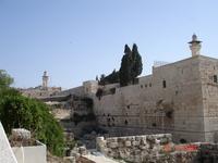 Вид на Западную стену Храма с обзорной площадки.