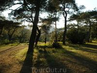 прогулка на джипах до Олимпоса