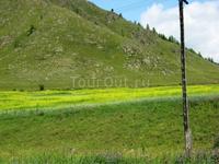 Вдоль дорги на Семинский перевал