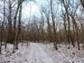 Снежок присыпал дороги