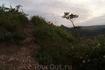тропы Чембало