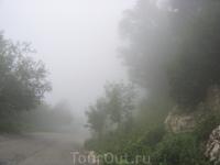 Дорога на альпийские луга в облаках