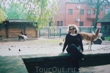 Зоопарк  является  крупнейшим  парком  живой природы в  России. На 17  гектарах площади  зоопарка  обитают  более  2х  тысяч  экземпляров  животных 300 видов, их них  61  вид  занесен  в  Международну