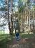 шли по лесопарку и шишки собирали