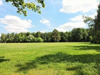 Красивая зеленая поляна перед дворцом