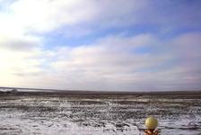 Калмыцские степи