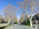 Мы приехали на станцию Вальядолид - Кампо Гранде и дальше отправились на прогулку по городу. От станции к центру города ведет Acera de Recoletos, бульвар ...