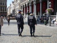 Брюссель. Полицию, за  4 дня пребывания  в  Бельгии,  увидела  дважды,появилось желание  запечатлеть.