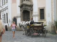настоящий Венгрерский городок Сентедре