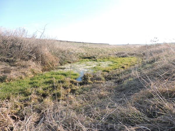 Это небольшой ручеек, который протекает по маленькой долине между двумя полями.
