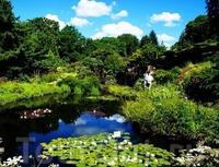 Ботанический сад в Осло