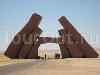 Египет, поездка на Мангровые рощи