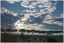 пиньи на закате...по дороге в Неаполь