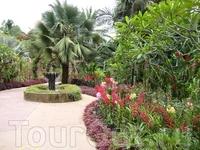 в Саду орхидей