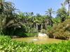 Аликанте - синее море, зеленые пальмы, белый песок
