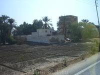 По дороге в Луксор.