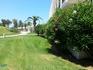 Очень жарко, но газоны все зеленые!