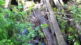 Есть речка и был мостик
