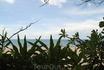 Пляж в отеле Vinh Suong Resort.