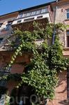 В городе много вьющихся растений на фасадах домов, особенно тех, которые не могут похвастаться красивой лепкой