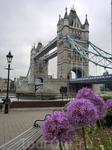 Все-таки не зря этот мост одна из главных достопримечательностей британской столицы, невероятно красивый.