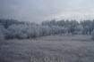 ЧУДО ПЯТОЕ -СЕЛО СИЗЬМА-  жемчужина Вологодской области. Уже сама дорога туда среди заснеженных полей и лесов настраивает на встречу с чем-то народным ...