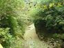 Гуамское ущелье. Ущелье разное оно не всегда пугающее, иногда просто похоже на очень заросшую реку спустившуюся с гор.