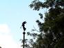Ангел на башенке старого братского кладбища