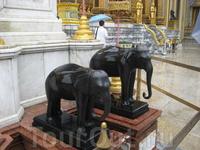 Слоны... Хочу видеть живого слона....