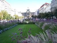 Вацлавская  площадь в осеннем убранстве