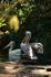 Пеликаны в Парке птиц