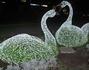 Светодиодные лебеди.Очень красиво смотрятся вечером