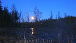 Лунная ночь.