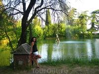 Парк в Гаграх