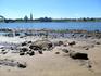 Вид центра Рыбинска с другого берега Волги