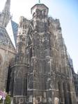 Вена, кафедральный собор